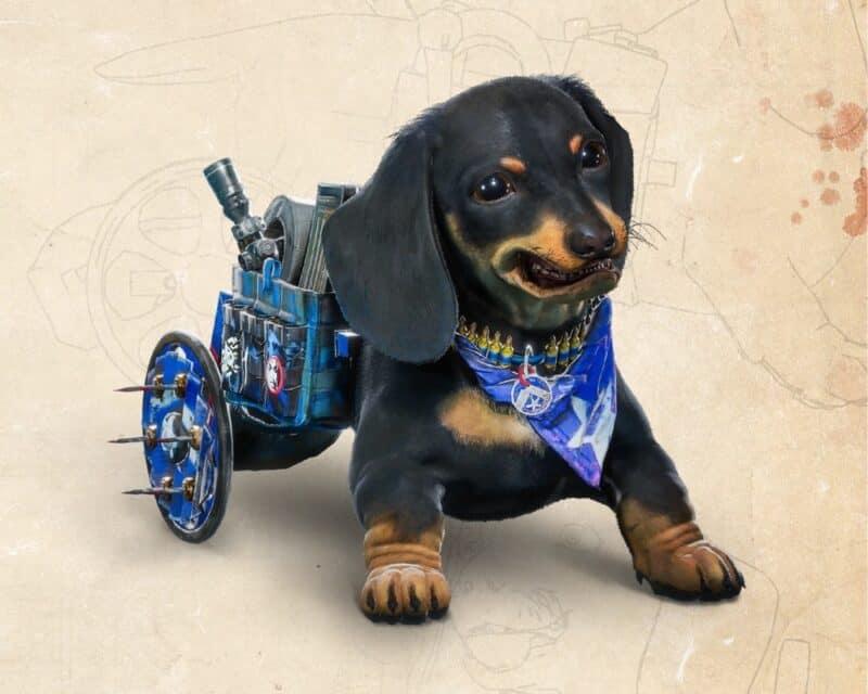 Niepełnosprawny piesek stał się gwiazdą nadchodzącego Far Cry 6